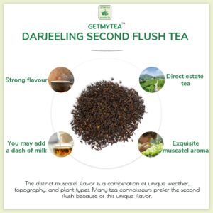 Single Estate Darjeeling Tea 2nd Flush Pyramid Bags - 20 bags x 2g each
