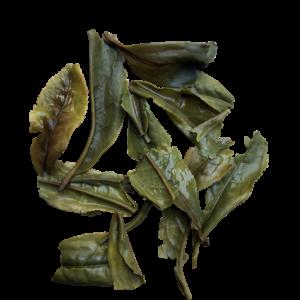 Coonoor Black Twirl Fresh Spring Tea
