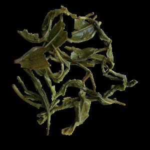 Coonoor Green Twirl Full Leaf Spring Green Tea